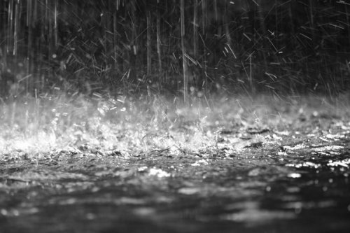 La pluie a beau faire