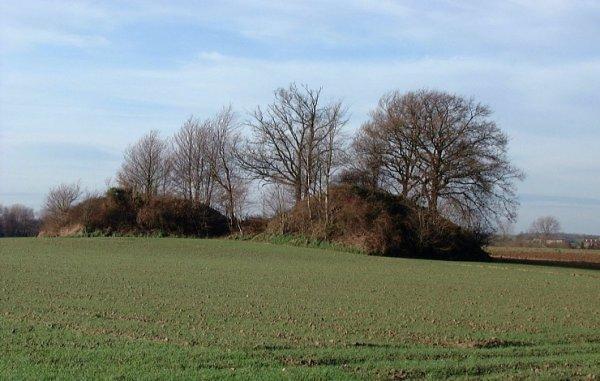 Les tumuli de Cortil-Noirmont
