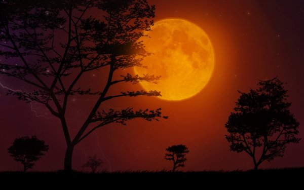Un quartier de lune rousse