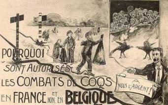 Les combats de coq à Montigny
