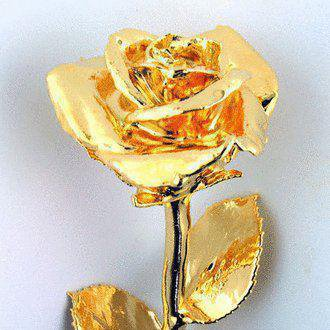 je vous offre cette rose ...