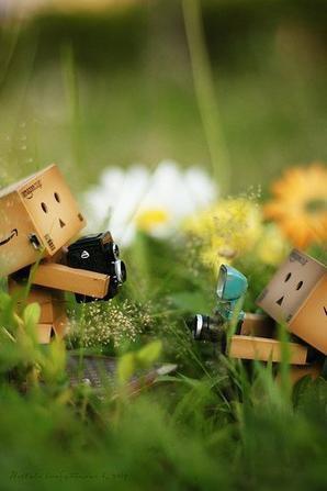 On m'as demander ce que je voulais être plus tard : heureux. On m'as dit que je n'avais pas compris... j'ai répondu, que eux, n'avait rien compris à la vie... :)