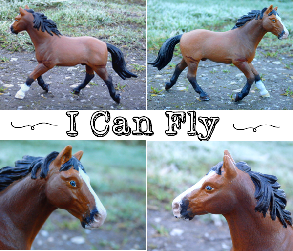 I Can Fly des Crins Noirs