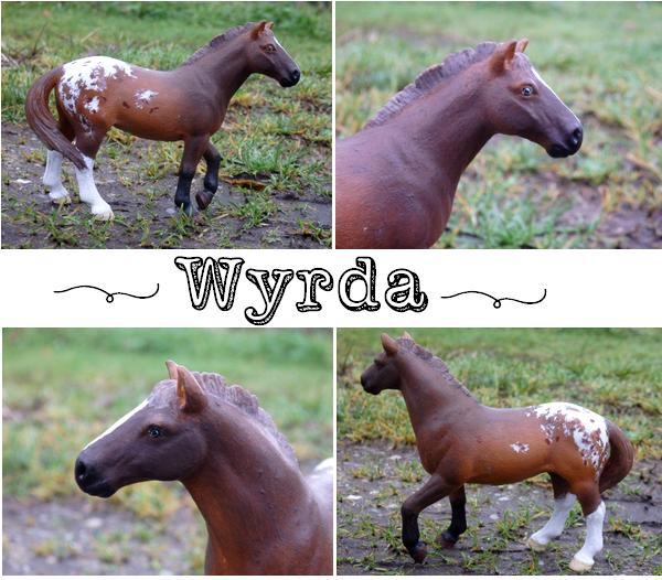 Wyrda des Crins Noirs