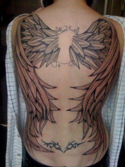 Ailes d 39 ange blog de tatoos - Tatouage aile d ange homme ...