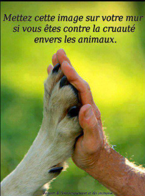 Partager ♣