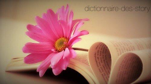 *dictionnaire-des-story*