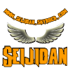 Seijidan