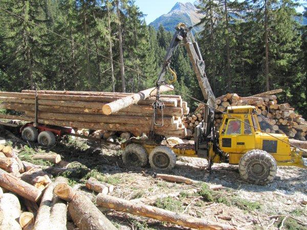 Porteur Cemet agrip qui reprend les bois à l' arrivée de la ligne