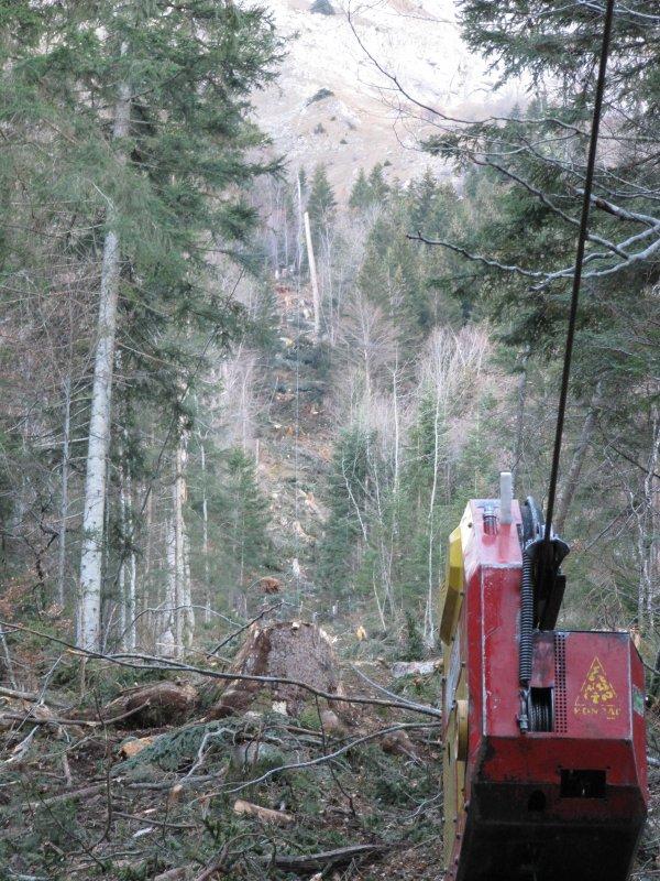 apercu de la ligne avec le woodliner 3000, on apreçoit le support bois au millieu de la ligne