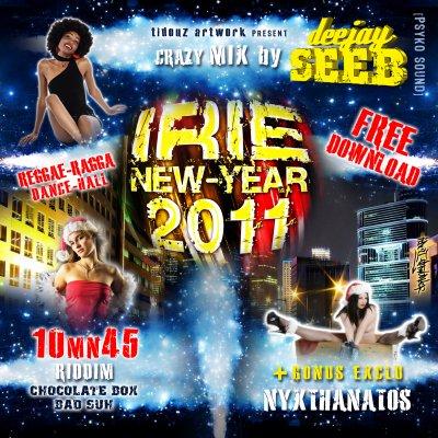 irie new-year 2011 Deejay Seeb Miiix