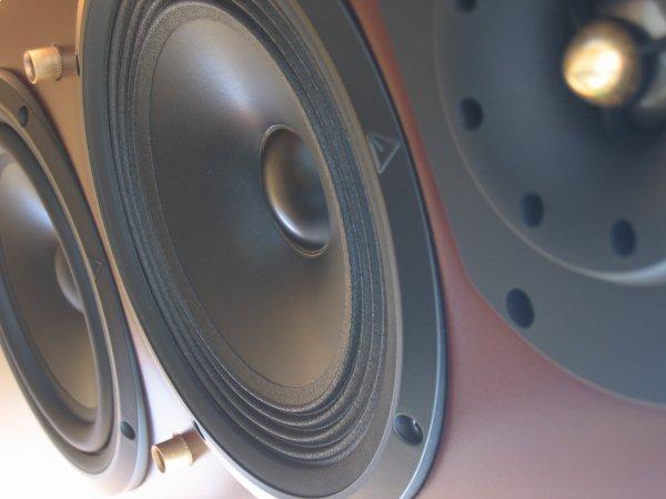 djseeb / Selecta Seeb Coolie Gal Riddim 2012 Mix (2012)