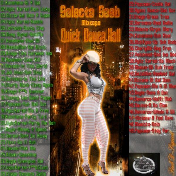 Selecta Seeb - QUICK DANCEHALL WEBTAPE 2012