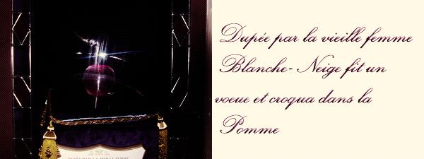 L'Histoire Des Princesse ...
