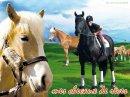 Photo de mes-chevaux-de-reves