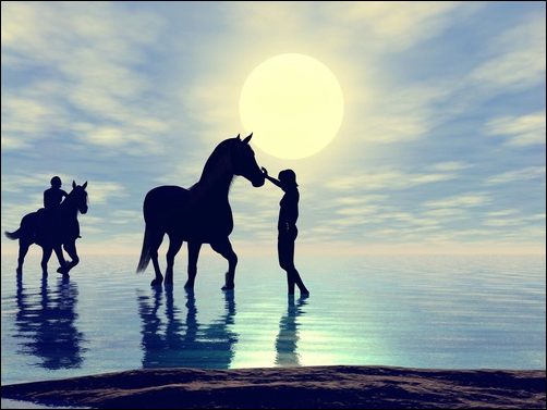 Loving a horse is so much easier than loving a person.