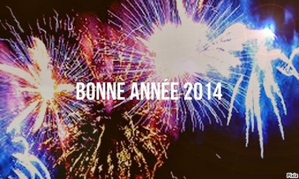 BONNE ANNEE 2014 A VOUS TOUS ET MERCI BEAUCOUP DE SUIVRE MON BLOG :-)