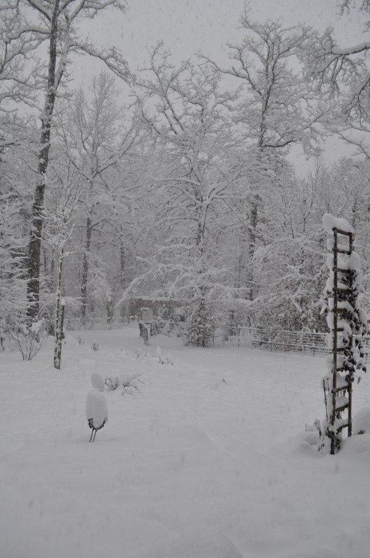 dimanche 19 décembre 2010 17:11