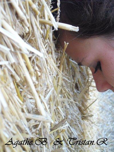 Sourie A la Vie :) .