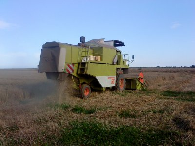 moisson blé 2011