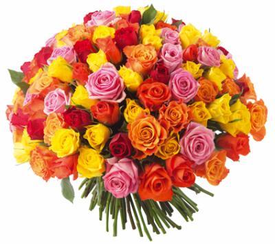La Signification Des Roses Pinklolita