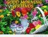 GOOD MORNING,,, BONJOUR les amies.