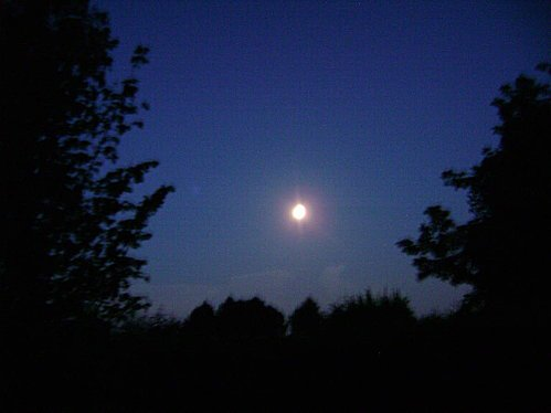 Les Lumières de la nuit