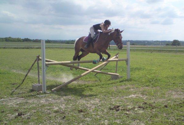Lance ton coeur au dessus des obstacles et ton cheval te suivra .