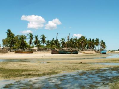 Cotes de Madagascar