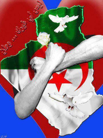 je suis algérien
