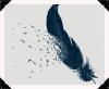 « Je ne trempe pas ma plume dans un encrier mais dans la vie. » *Blaise Cendrars*