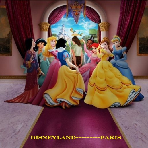 le pavillon des princesses