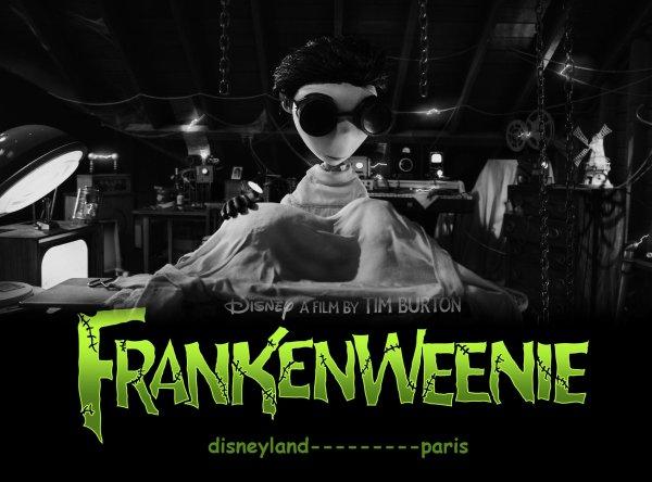 "FLASH: ""Frankenweenie"": Le nouveau Disney & Tim Burton !"