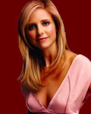 Avant de faire un résumé de chacune des saisons de Buffy, je pense nécessaire de faire la présentation des personnages pour une meilleur compréhension de l'histoire.