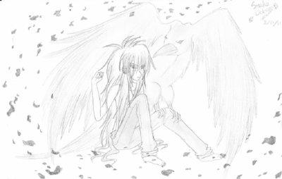 La comtesse et le corbeau