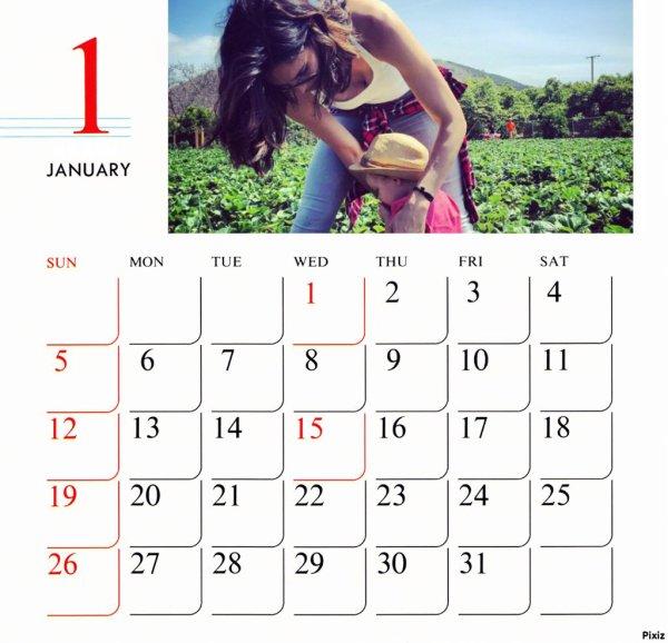 Janvier 2017 (anti pliage merci)