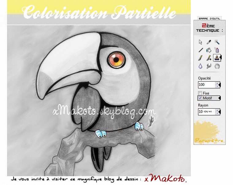 TUTORIEL 2 : COLORISATION PARTIELLE