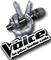 Photo de thevoice-musics