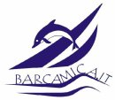 Pictures of barcamica