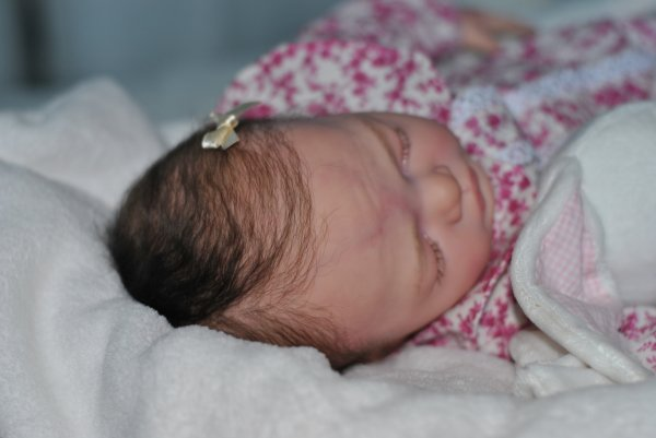 Voici JULIETTA  joli petit ange disponible à l'adoption