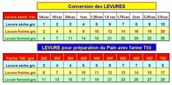 CLASSIFICATION DES LEVURES