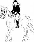 Photo de equitation-occasion