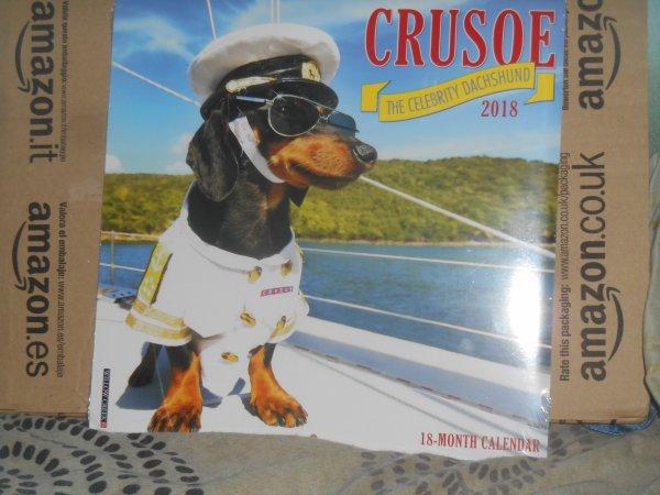 842. Mon copain virtuel Crusoe