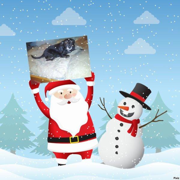 1243. Jolis cadeaux de Noël reçus de Ghislaine