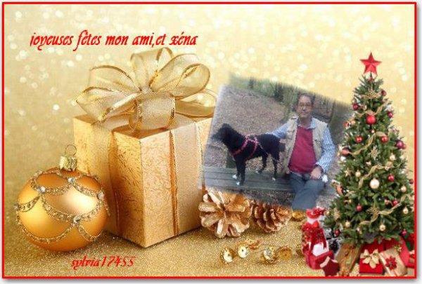 1251. Joli cadeau de Noël reçu de Sylvia