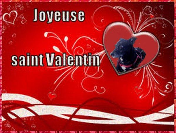 1273. Jolie création de saint Valentin reçue de Jenny
