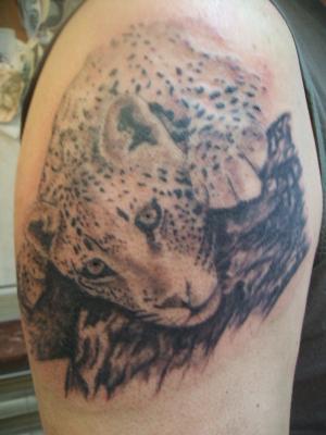 Panthere - Le Tatouage