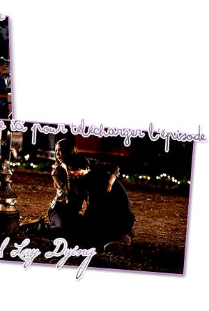 Vendredi rime avec ... The Vampire Diaries