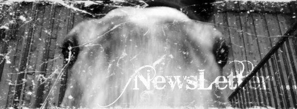 NewsLetter ... ! (: