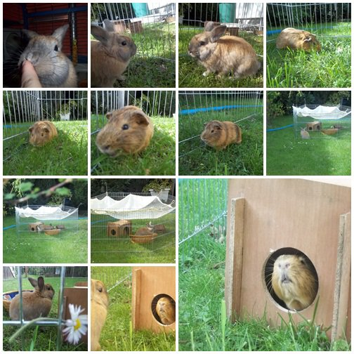 Photos prise le 26 avril 2012